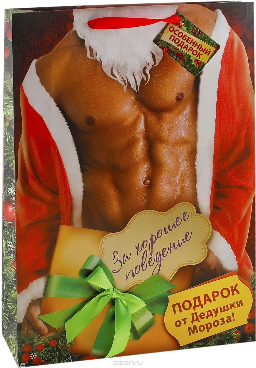 Большой пакет  Подарок Деда Мороза  ЗА ХОРОШЕЕ ПОВЕДЕНИЕ, 26х32 см