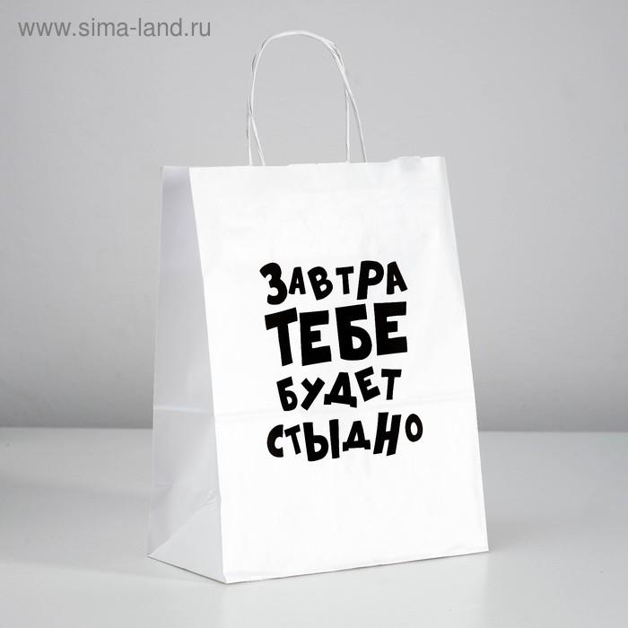 Пакет подарочный ЗАВТРА ТЕБЕ БУДЕТ СТЫДНО 24х14х30 см