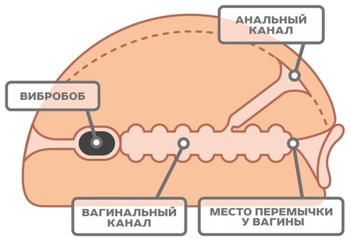 Крупная Вагина-Анус с вибрацией, 30x20x8 см